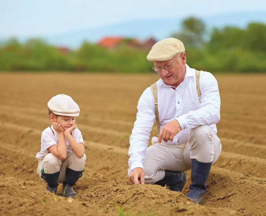 Großvater mit seinem Enkel am Feld