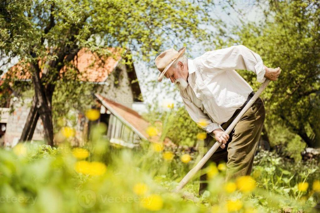 Alter Bauer beim Arbeiten auf der Wiese