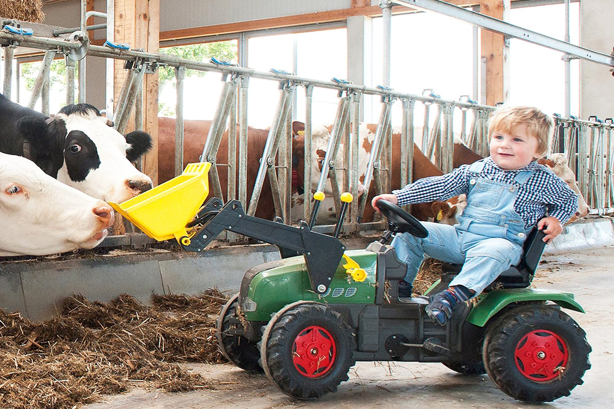 Ein kleiner Bub auf seinem Trettraktor im Kuhstall