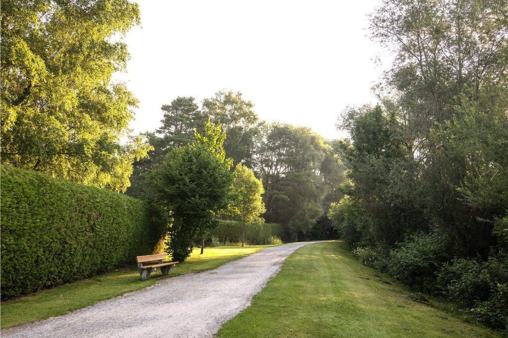 Ein Schotterweg umgeben von zwei Wiesenstreifen einer Hecke und Bäumen und einer Bank neben dem Weg