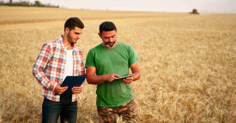 Ein Mann mit zeigt einem anderen Mann, im Haferfeld stehend, etwas auf seinem Tablet